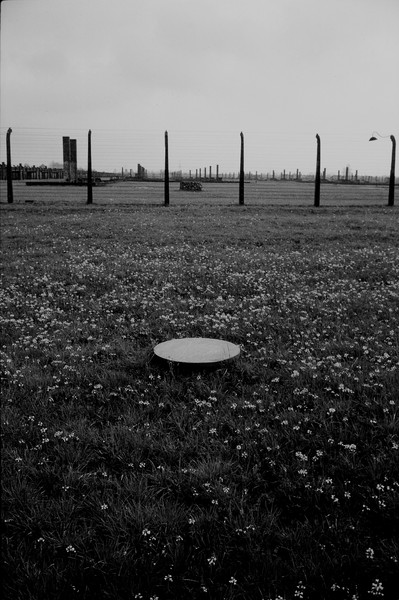 Untitled 13 : A Requiem: tribute to the spiritual space at Auschwitz : SUSAN MAY TELL: Photographs of Space, Silence & Solitude